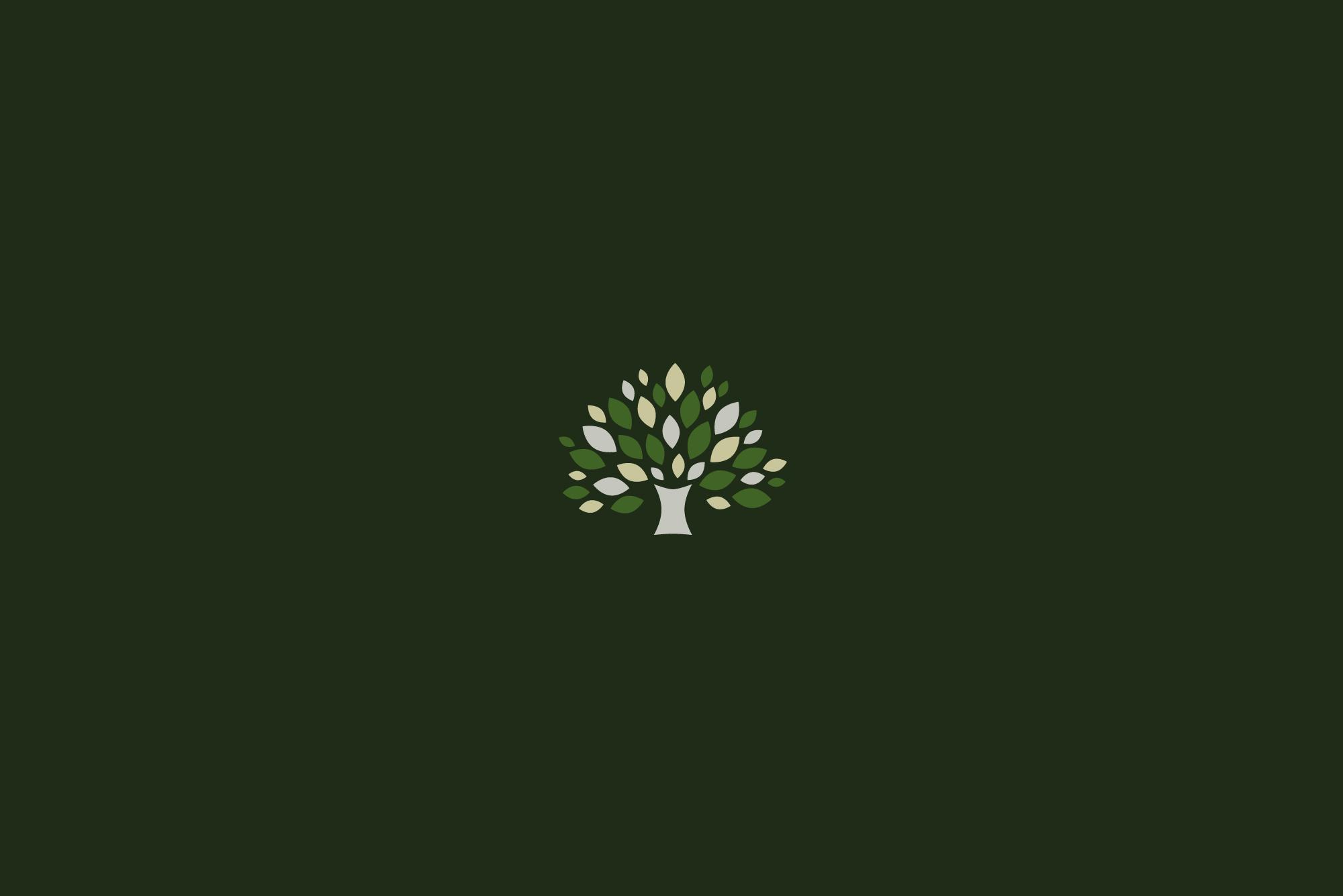 Bowtree Homes Logo Design